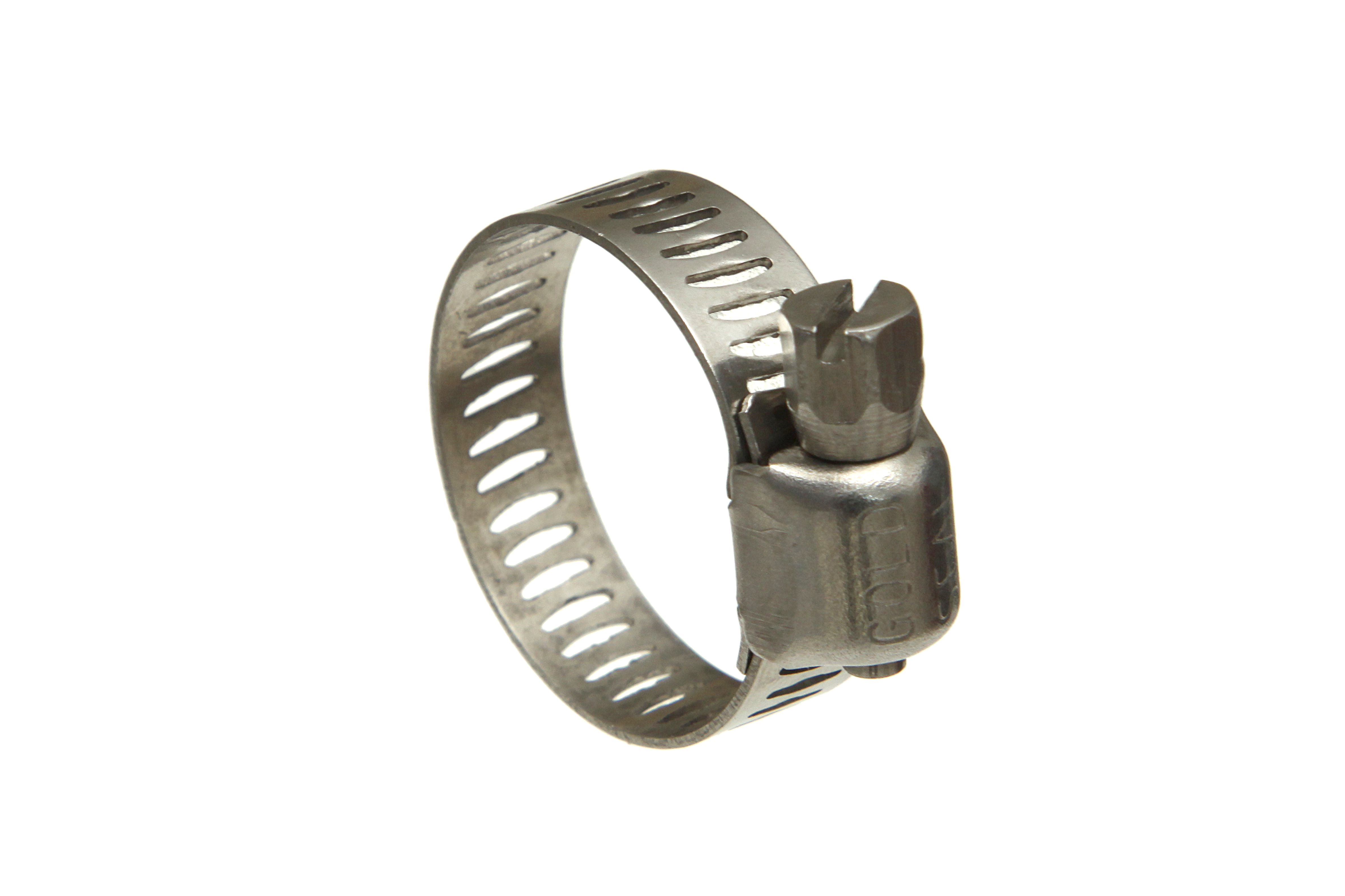 "5/16"" Wide Worm Drive Clamp"
